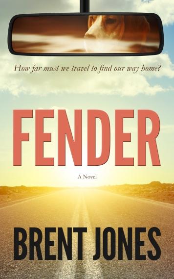 Fender Cover